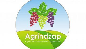 Logo Degradado - Agrindzap-01